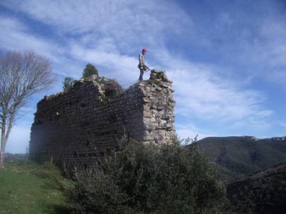 Dévégétalisation Château de TERMES