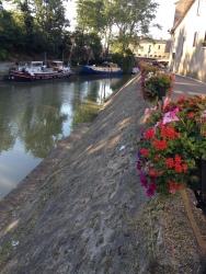 Résultat débroussaillage Péret Canal du midi - TREBES