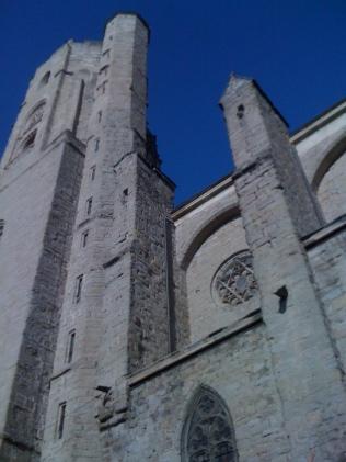 Dévégétalisation église Saint Vincent - CARCASSONNE
